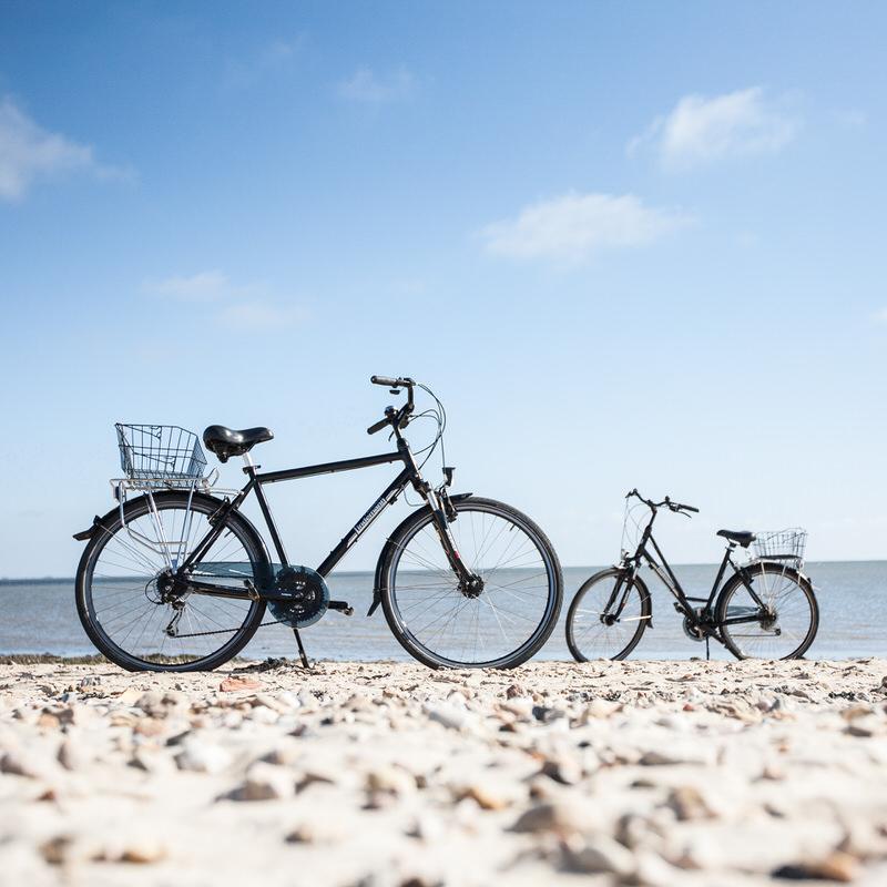 Fahrrad Lindemann Nordseebike Verleihfahrräder